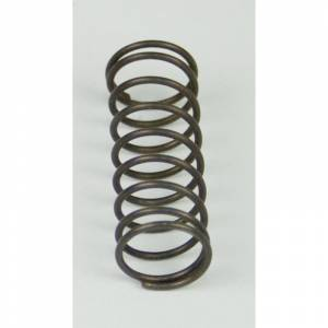 Engine & Performance - Fuel System - BD Diesel - BD Diesel Flow-MaX Pump Pressure Spring - 18psi 1500318